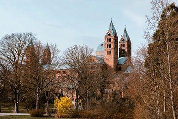 Dom zu Speyer. Einer der drei Kaiserdome entlang des Rheins von JWB Fotografie