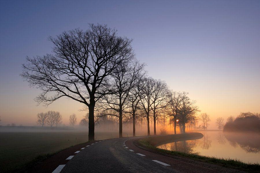 Mistige ochtend van Mark Leeman