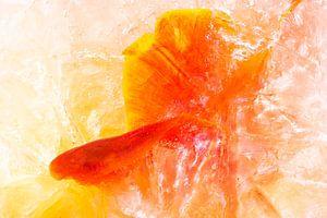 Frozen tulip van