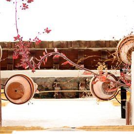 The Flowerpots van Cornelis (Cees) Cornelissen