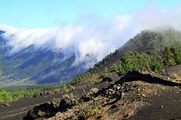 Vulkaan Caldera de Taburiente op La Palma van Jolanta Mayerberg