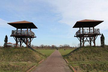 Archeologisch Park Matilo in Leiden van Carel van der Lippe