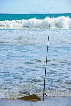 Fishers Rod