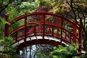 Rode brug in Japanse Tuin Clingendael  van Ronald H