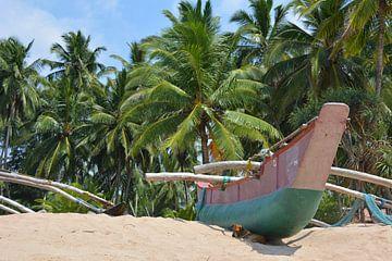 Vissersboot en palmen op strand Sri Lanka van My Footprints