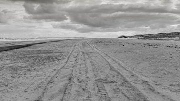 Sporen in het zand van Timo Bergenhenegouwen