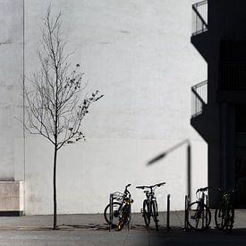 Fahrräder und Baum London Canary Wharf von Maarten Visser