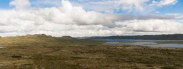 Hardangervidda Noorwegen  van Greetje Heemskerk