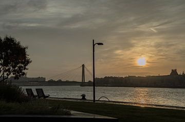 Rotterdam zonsopgang aan de maas von Oguzhan Beyaztas