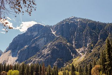Yosemite National Park, Californië, USA van de Roos Fotografie