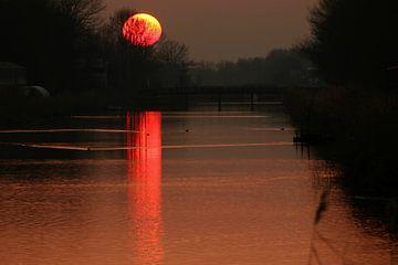 Rode Zon van Pauli Langbein