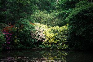 Bloemenpracht aan het water van