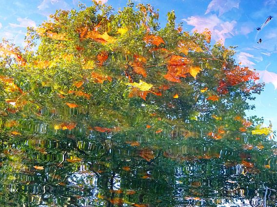 Tree Magic 166