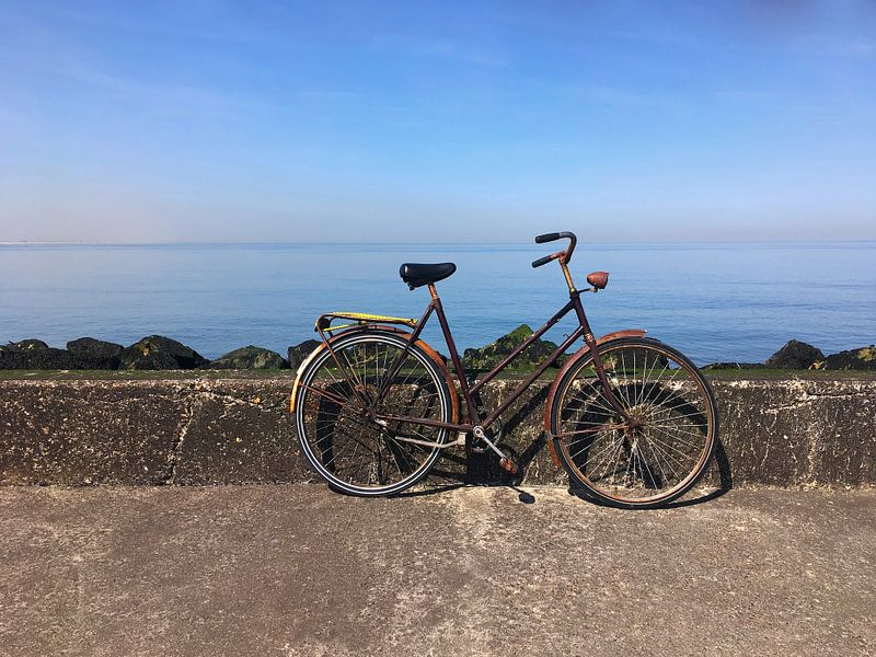 Vélo au bord de la mer sur Frank Herrmann