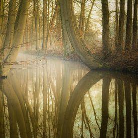 Die Oelerbeek von Arjan Keers