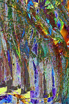 Trees van Heidrun Carola Herrmann