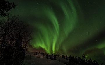 Noorderlicht Lapland van Suzanne De Boer