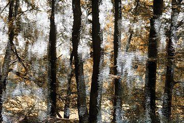 TreeArt