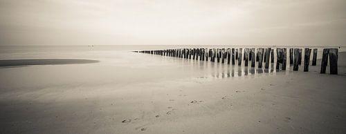 Panorama strand Domburg van