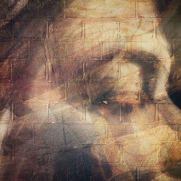 Gesicht und Gefühl von Johannes Schotanus