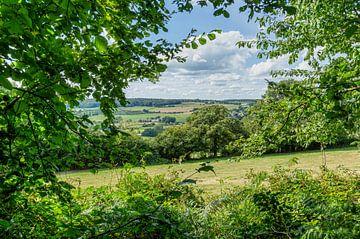 Doorkijkje op de Zuid-Limburgse heuvels in de buurt van Camerig van John Kreukniet