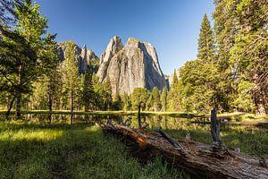 Cathedral - Yosemite National Park van