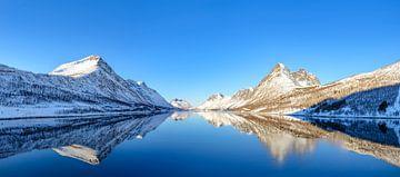 Gryllefjorden panorama tijdens een mooie de winterdag in Noord Noorwegen van Sjoerd van der Wal