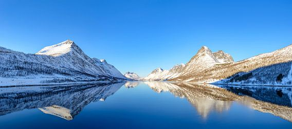 Gryllefjorden panorama tijdens een mooie de winterdag in Noord Noorwegen