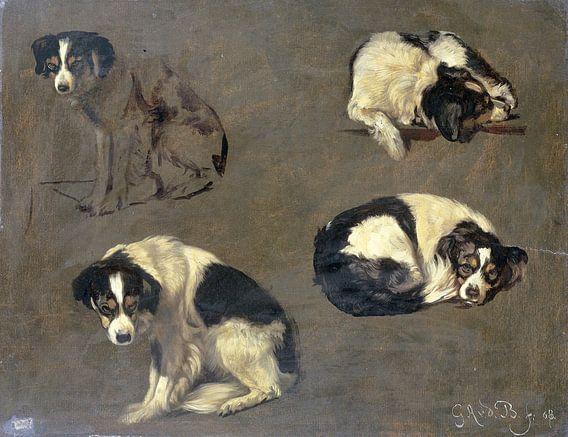 Vier studies van een hond, Guillaume Anne van der Brugghen van Meesterlijcke Meesters