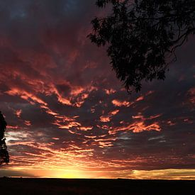 Zonsondergang in Patagonie Argentinië van Ellen van Drunen