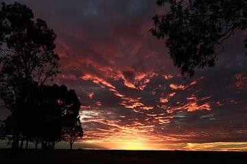 Zonsondergang in Patagonie Argentinië sur Ellen van Drunen