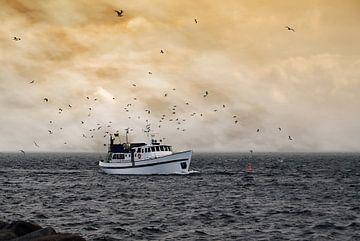 Trawler and seagulls van Peter Bergmann