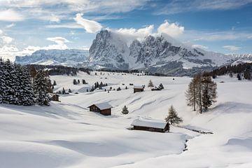 Winter auf der Seiser Alm von Michael Valjak