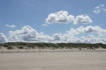 Duinen - Naar het strand van Luci light