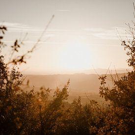 Zonsondergang in de Ombrone vallei van Isis Sturtewagen