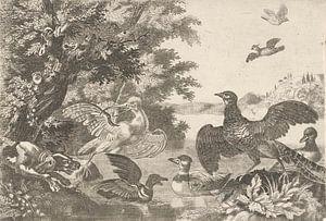 Watervogels en een hond, Melchior d'Hondecoeter