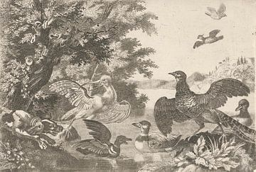 Wasservögel und ein Hund, Melchior d'Hondecoeter