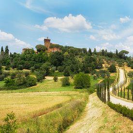 De glooiende heuvels van Toscane! van Truus Nijland
