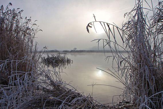 Koude mistige wintermorgen.