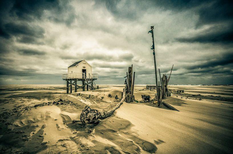After the Storm van Nanouk el Gamal - Wijchers (Photonook)