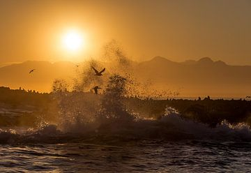 Spritzender Sonnenaufgang auf Seal Island von Peter Leenen
