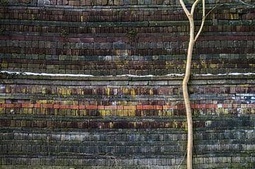 colors and patterns no.1 van Robin Veenink