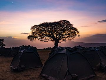 Camping in der Abendsonne von Stijn Cleynhens