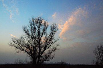 Wolkengloed van A'da de Bruin