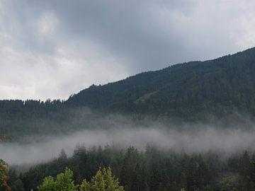 Nevel in bergen van Rinke Velds