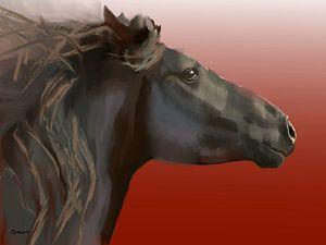 Paard, Frysk hynder. (Fries paard) van Alies werk