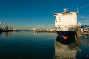 Cruiseship aangemeerd in Rotterdam van