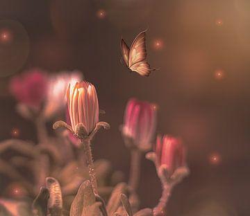 bloemen en vlinder in fantasie wereld van Jessica Vreede