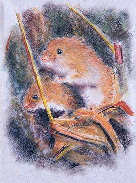 Hamsters von Ton van Buuren