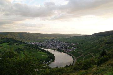 Uitzicht over de Moezel rivier in Duitsland van R Verhoef